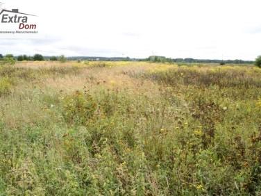 Działka rolna Rogozina