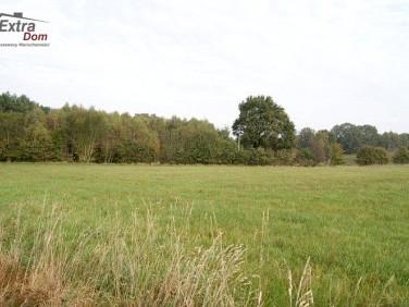 Działka rolna Nowogard