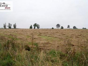 Działka rolna Trzęsacz
