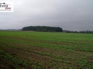 Działka rolna Gryfice