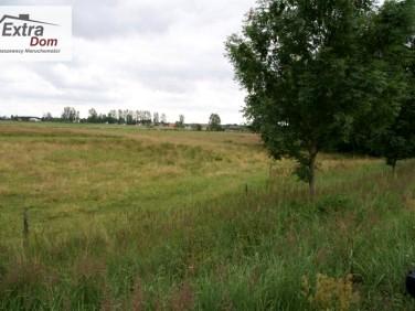 Działka rolna Goleniów
