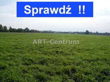 Działka rolna Zamek Bierzgłowski
