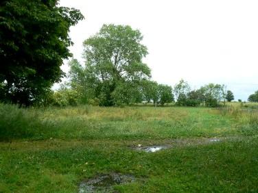Działka rolna Wierzchomino