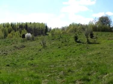 Działka Kozia Góra