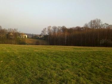 Działka rolna Witkowice