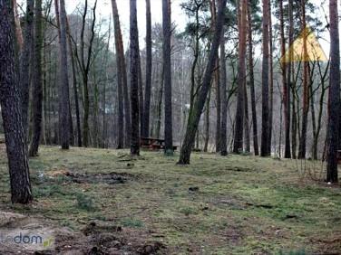 Działka budowlana Boszkowo-Letnisko