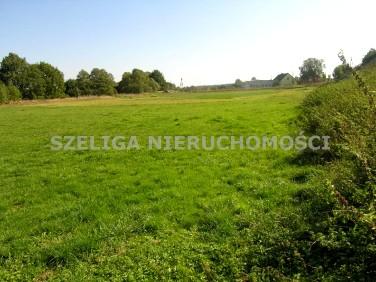 Działka rolna Pławniowice