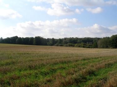 Działka rolna Zielona Góra