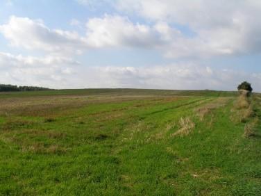 Działka rolna Węgorzyno