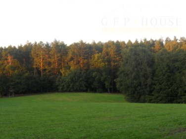 Działka budowlana Białokoszyce