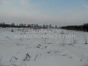 Działka rolna Ostrów Lubelski