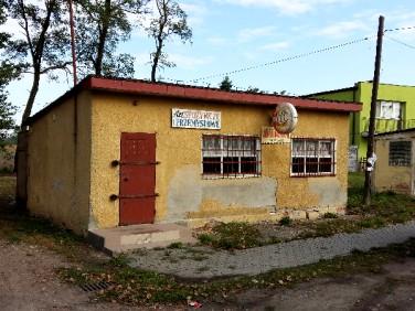 Lokal Kruszwica