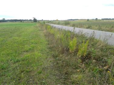 Działka rolna Kosów Lacki