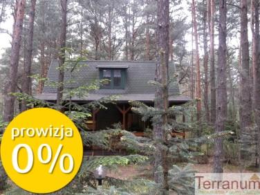 Działka leśna Krajęczyn