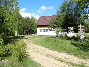 Działka siedliskowa Mirachowo