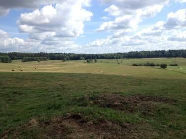 Działka budowlano-rolna Stękiny