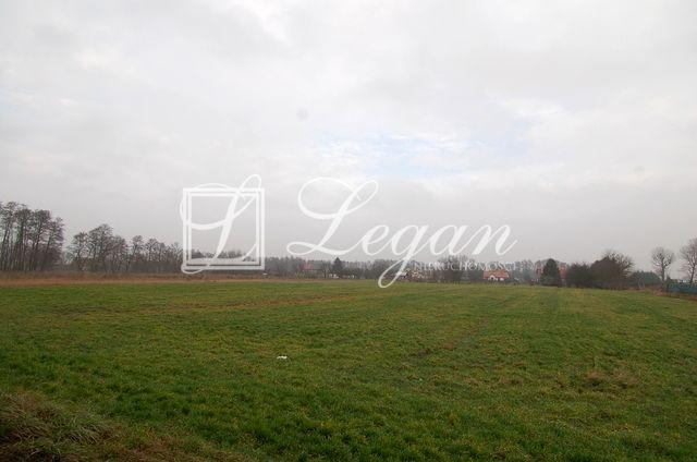 Działka Łagodzin