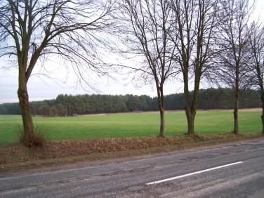 Działka siedliskowa Murowana Goślina