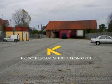 Lokal Modrzyca