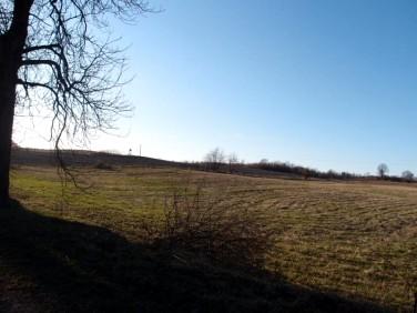 Działka Ogrodniki