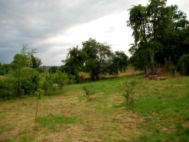 Działka rolna Paprotki