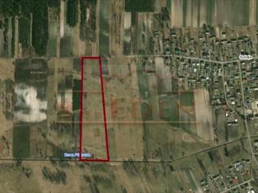 Działka rolna Suleje
