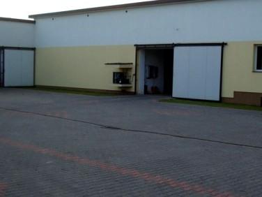 Lokal Ożarów Mazowiecki