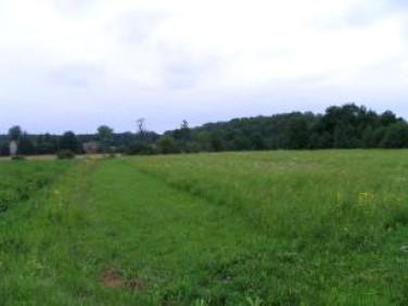Działka rolna Wola Zabierzowska