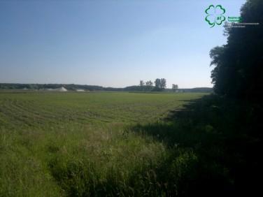 Działka rolna Pięczkowo