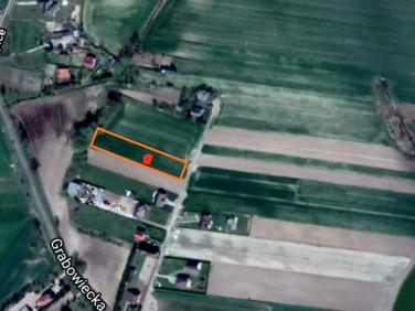 Działka budowlano-rolna Hrubieszów