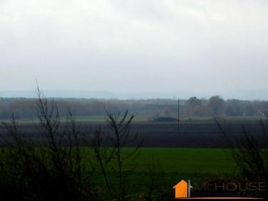 Działka rolna Staszów