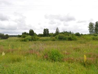 Działka rolna Manowo