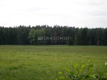 Działka budowlana Ostrowin
