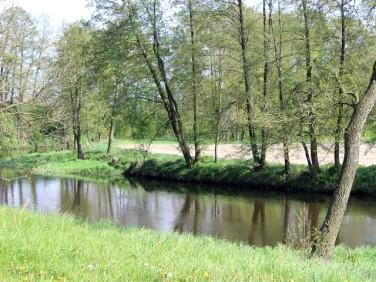 Działka rekreacyjna Prusocin