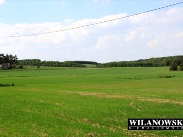 Działka rolna Lewiczyn