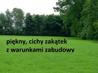 Działka Duszniki