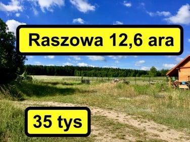 Działka Raszowa