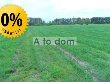 Działka rolna Nadbiel