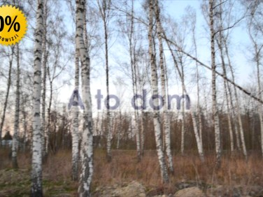 Działka leśna Choiny