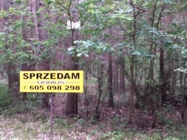 Działka leśna Zakrzówek Szlachecki