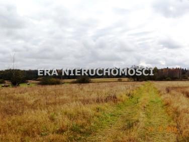 Działka budowlano-rolna Białowieża