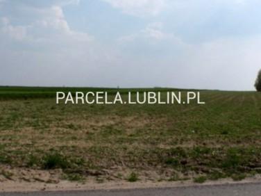 Działka rolna Dąbrowica sprzedam