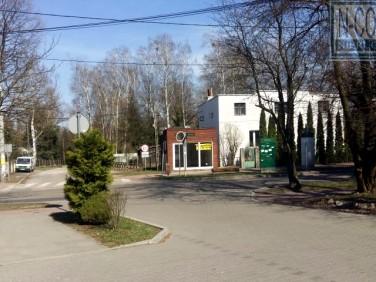 Lokal Podkowa Leśna