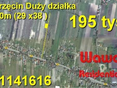 Działka Borzęcin Duży