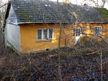 Dom Ołpiny