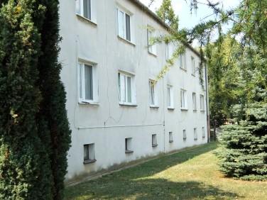 Mieszkanie Tulce