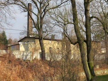 Lokal Pszczyna