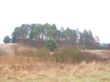 Działka rolno-leśna Santocko
