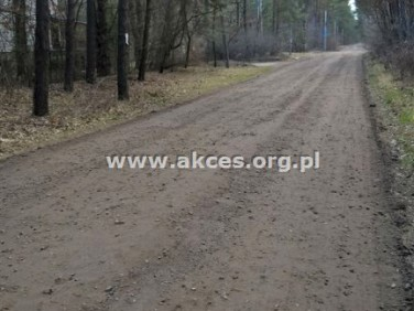 Działka leśna Otwock