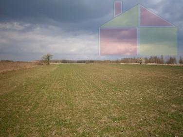Działka rolna Żary